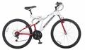 Woodworm GXI PRO Junior Mountain Bike