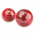 Woodworm Test Crown 5 1/2oz Cricket Ball