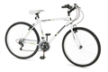 Woodworm Glacier Point 18 Speed Mountain Bike